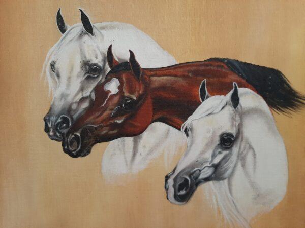 Purebred Corgis - Bison Ridge Corgis Paintings