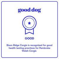 Good Dog Award, Bison Ridge Corgis